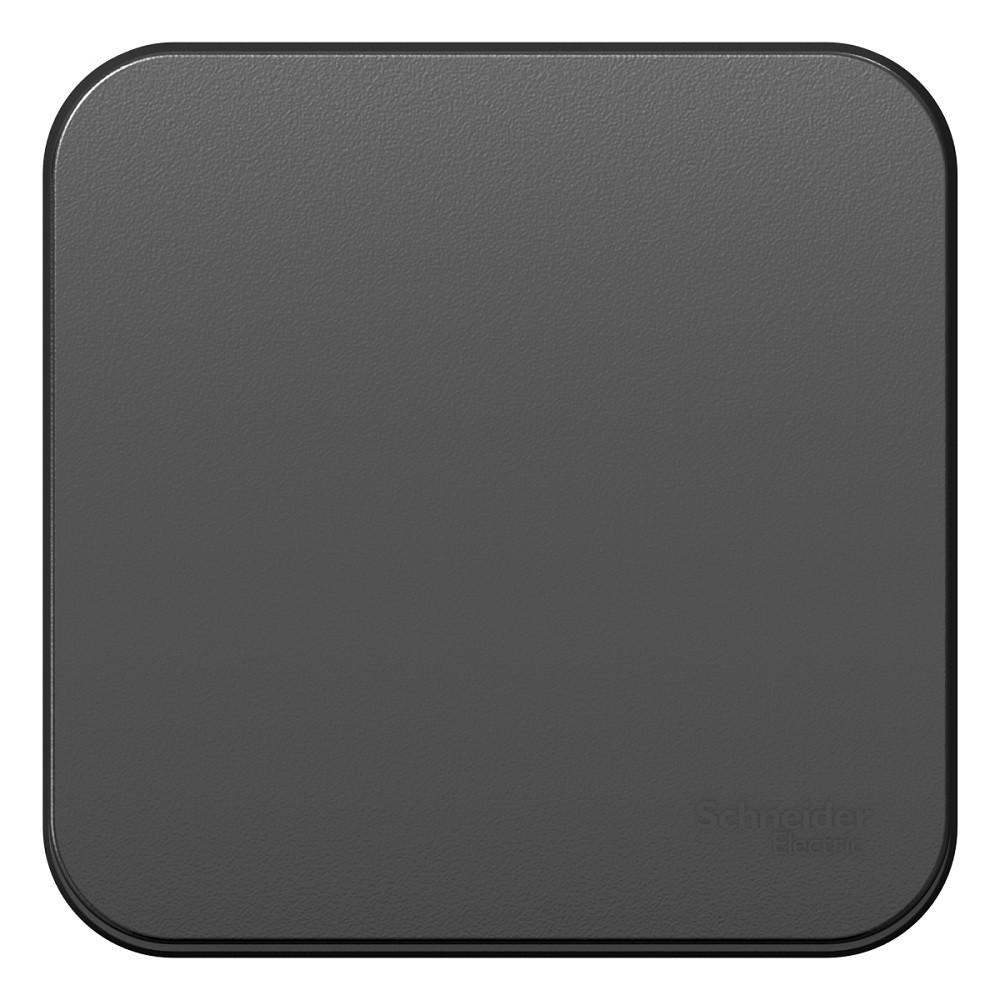 Переключатель накладной Schneider Electric Blanca BLNVA106016 одноклавишный с изолирующей пластиной антрацит фото