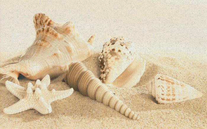 Gracia Ceramica Amalfi 010301001684 декор для плитки (бежевый), 25х40 см фото